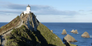Nugget Point, South Island