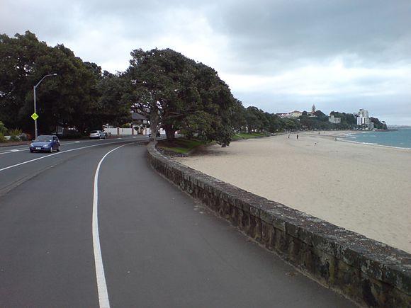 Tamaki_Drive