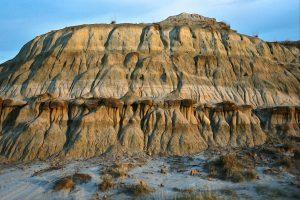 Dry_island_buffalo_Park_Alberta_Canada