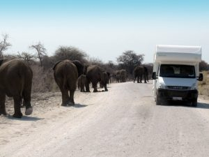 Namibia_campervan_with_elephants