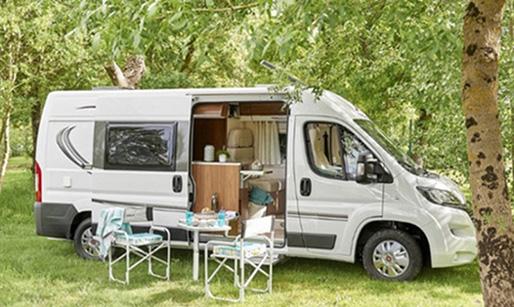 Go Wild in a Camper.